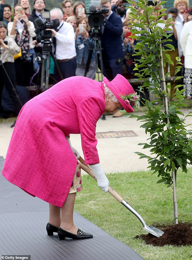 Independent: The Queen firmly refused the offer of help as she stepped up to plant a tree at the National Institute of Agricultural Botany (NIAB), in Cambridge, this afternoon, pictured